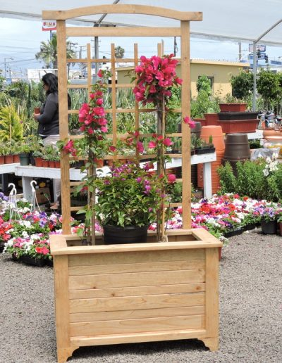 outdoor-pots-and-planters (2)