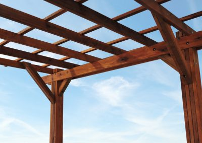 pergolas-arbors-and-trellises (3)